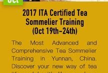 2017 ITA Certified Tea Sommelier