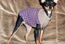 knitted fashion for dogs