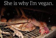 wanna be vegan