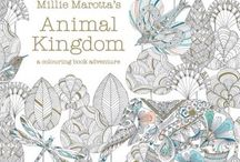 Colouring books / A range of beautifully illustrated colouring books for adults and children alike!