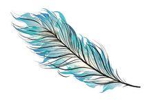 plume flèche