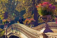 Spring Central Park NYC
