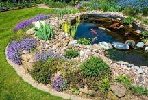 Gartengestaltung – zwischen Hecke und Zwerg