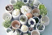 Jolies fleurs / Bringing you all sorts of flower inspirations.