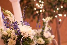 Wedding / The Regatta has two state-of-the art function spaces: The Regatta Room can host 300+ seated guests -- perfect for conferences and weddings -- and the more intimate Optimus Room accommodates up to 60 seated guests for board meetings, press conferences, upscale dining or wine-tasting events. There is also a dressing room with private bath and shower -- perfect for VIPs, brides or talent.