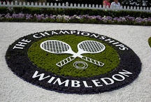 Our Wimbledon Neighbours