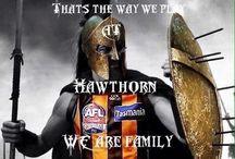I love the Hawks
