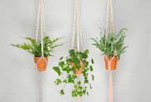 Plant Life <3