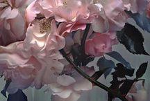 Květy ve všech podobách