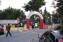 röne park