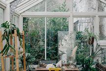 ー glasshouse