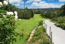 Roseville Golf Club Golf / Located right in the heart of Sydney's leafy north shore and is 20 minutes from Sydney's CBD.  Roseville Golf Club prides itself on their picturesque 18-hole golf course and is North Shores leading Function Venue.