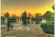 parks !!