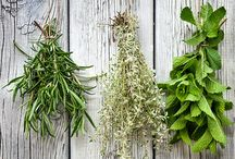 Kitchen Herbals / Using kitchen herbs to create health and wellness