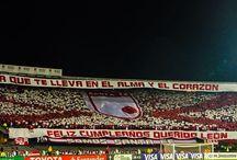 Mi rojo Independiente Santafe / Fotos de mi equipo del alma Independiente Santa Fe de Bogotá Colombia