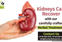 Kundan Kidney Care / Kundan Kidney Care is committed to Ayurvedic medical principles in partnership with modern medical care.