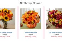 Call @ 646-762-1221 For Same Day Flower Delivery NYC / Same Day Flower Delivery NYC can help you express just the sentiment to make any occasion special. Our network of experienced local NYC florists can be trusted to create the best flower arrangement for all your special occasions.