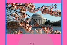 Mid-Atlantic / Best of America's middle Atlantic area;s attractions, adventures, culture, food, and accommodations
