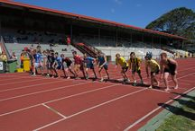 Sports / Sports at ACG Strathallan