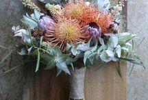 Australian Native Flower Ideas