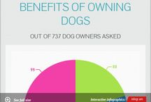 Dogs At-A-Glance / Beautiful infographics and helpful articles to keep you and your canine happy, healthy, and safe!