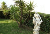 """Villa Baiera, your homeholidays next Rome / http://www.baiera.it Welcome to Villa Baiera, on the hills of Rome: the houses comfortably furnished with en-suite facilities.    We are 12 km far the Ciampino airport;  a nice accomodation in a quiet residential avenue, overlooking beautiful countryside of wineyards and olives. We are 20 minutes from both Rome and Ciampino airport. In our area, there are: CNR, ENEA, ESRIN. Villa Baiera is a 20 km only from a big Park """" Rainbow Magic Land"""" in Valmontone."""
