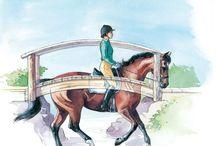 Equestrian Tips