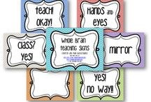 Whole brain teaching - Power Teaching