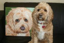 Pets I have met. / Cute pets that Sherry Kendall has met while out and about, or at her studio, WaggingTailPortraits.com, in Woodbine, MD.