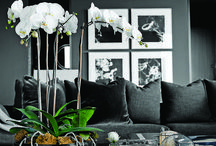 Living Room Gallery Wall Tips / One good way of adding beauty to a bare wall is to add some picture frames in it. Some would place a single photo while others place a lot of them to create a mini-gallery. But in modern design where clutter and too much decoration are not tolerated, picture frames are subtly used. There are different ways to place and arrange frames in your living room, which we are about to show you.