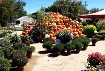 Stutzmans Garden Center - Salina, Kansas