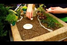 Mini jardins / Mini jardins