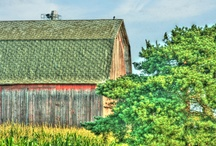 Barns, Outbuildings, Rustic Structures