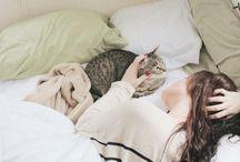 My cats / Todo de gatos