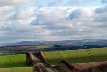 Scotland / by Lisa Mieth