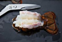 Seafood / by Jason Bombagi