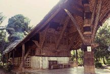 Tropical Vernacular Architecture