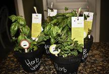 Teacher Appreciation Gift Ideas / Teacher Appreciation Gift Ideas