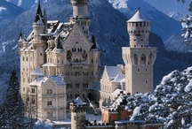Germany and Belgium Trip / by Melissa Shingler
