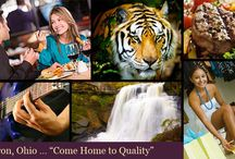 Akron OH Lifestyle / Akron Ohio is a diverse mixture of cultural and industrial opportunities.