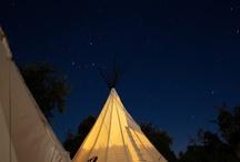 Glamping tips / De meest bijzondere glamping adressen. Safaritenten, lodgetenten, boomhutten, gepimpte caravans.