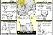 WORKOUTS / workouts for all body parts!