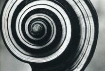Andreas Feininger / Andreas Bernhard Lyonel Feininger (ur. 27 grudnia 1906, zm. 18 lutego 1999 roku) – amerykański fotograf niemieckiego pochodzenia.