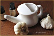 Health Issues: Sinus, Allergies, Congestion
