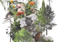 ARQ. collage