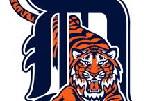 detroit tigers / by Tonia Doyle