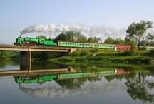 Trains / by Hiroko Ohtsu