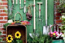 Rangements outils de jardin