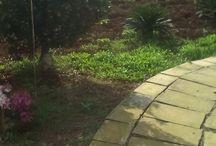 il mio angolo green