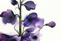 watercolours flowers